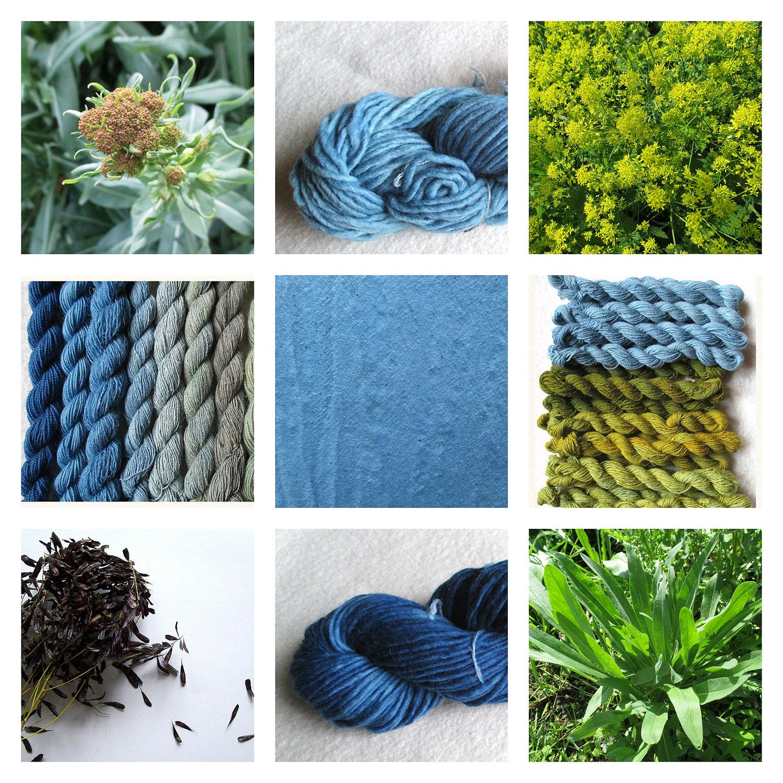 Färben mit natürlichen Materialien - ein fast vergessenes Handwerk. Hier eine Collage